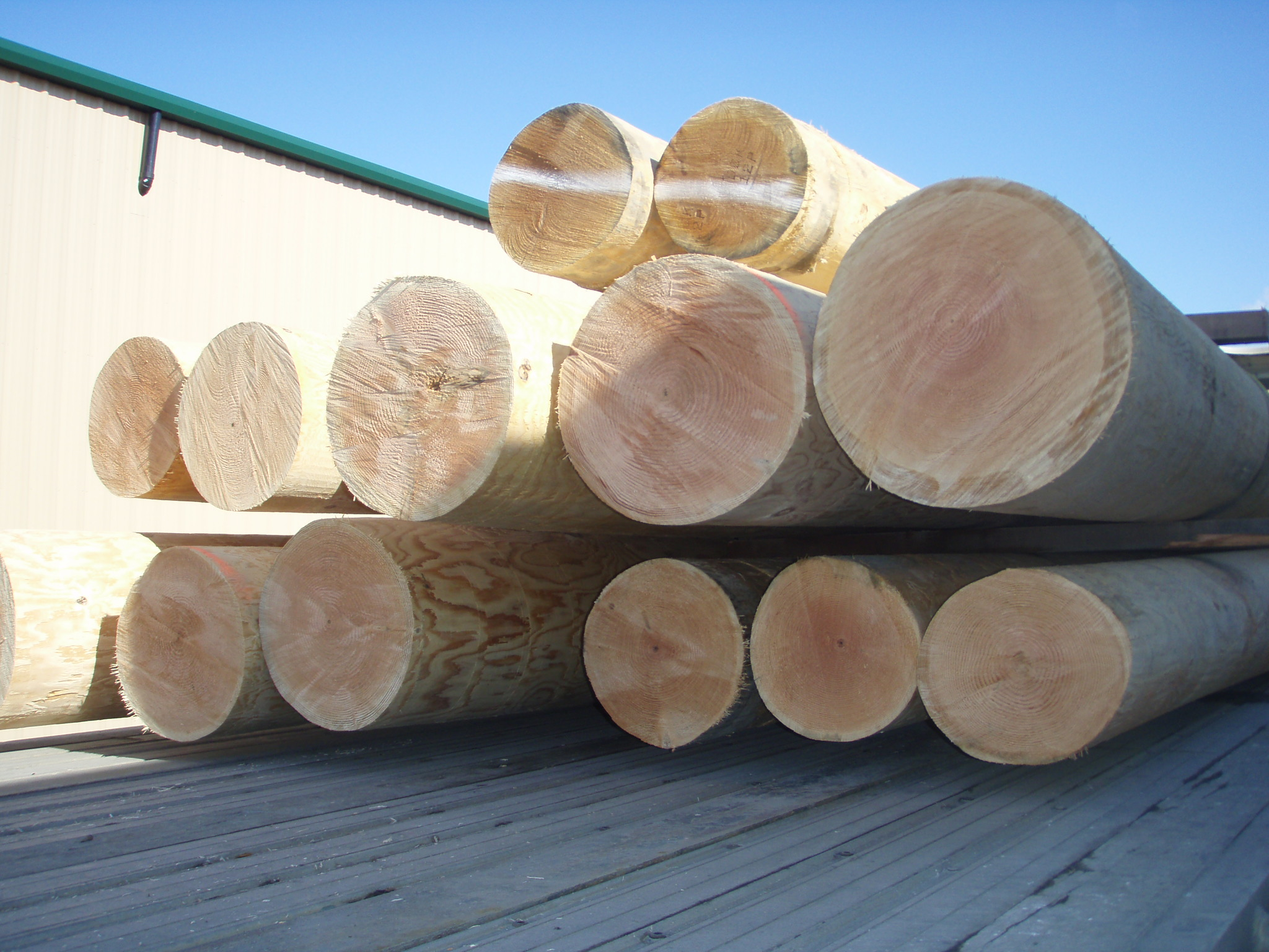 PowerWood Corp  Cedar and Douglas Fir Logs - PowerWood Corp