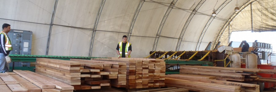 Personnel checking Custom Cedar lumber 3